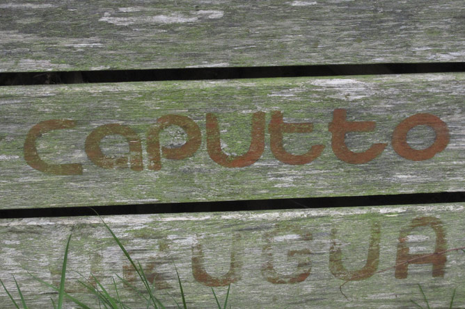 Orange crate text detail 'Caputto'