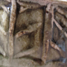 Herringbone roulette, espresso mug glaze detail