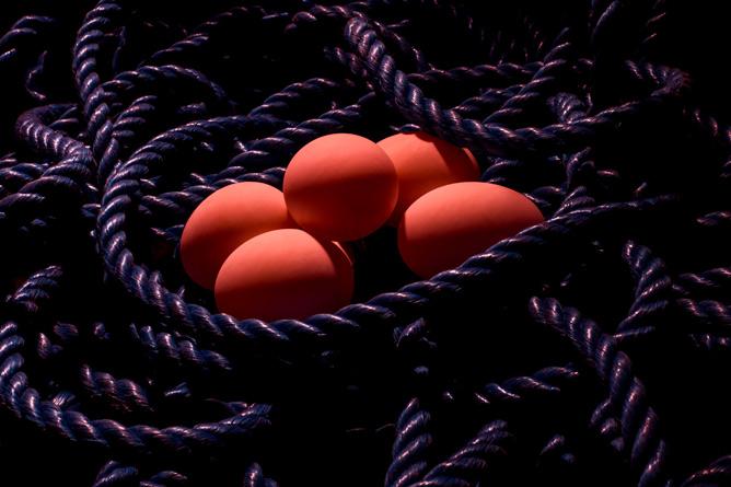 eggs.web