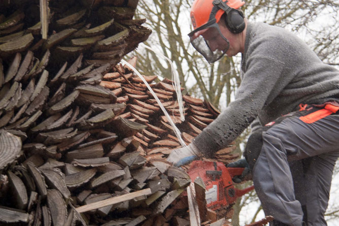 Kiln wood cross-cut halved with chainsaw