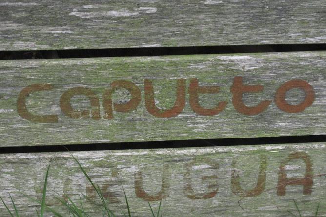 Orange crate text detail 'Caputto'