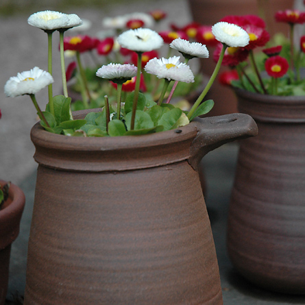 Terracotta plant pots by Patia Davis, Wobage Makers Gallery
